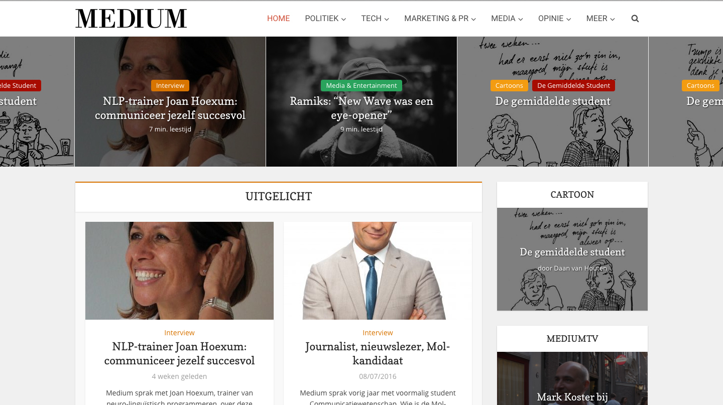 niche WordPress theme