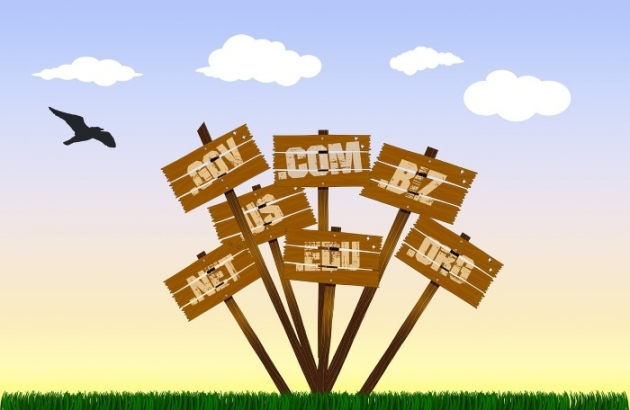 how to choose domain namefor your business