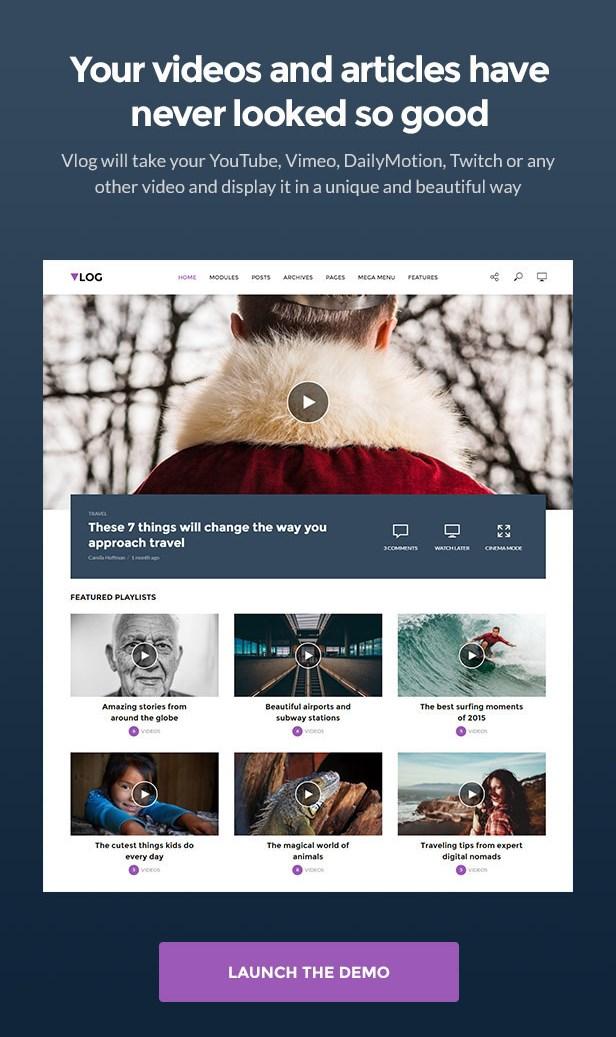 Infographic about Vlog WordPress theme