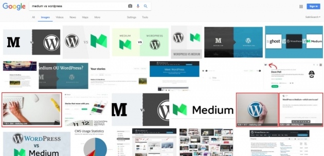 example on what is image alt text in search results