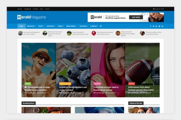 wordpress magazine themes herald screenshot